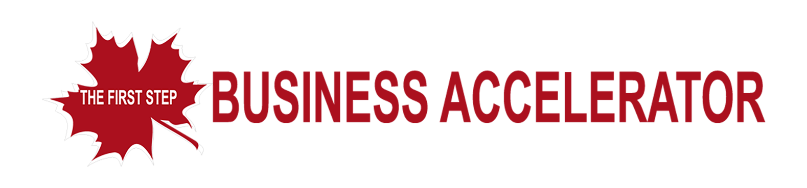 THE FIRST STEP – BUSINESS ACCELERATOR PROGRAM